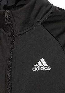 adidas Performance Trainingsanzug »TEAM TRACKSUIT« (Set, 2-tlg)