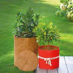 Garden Dream Pflanzen-Winterschutz