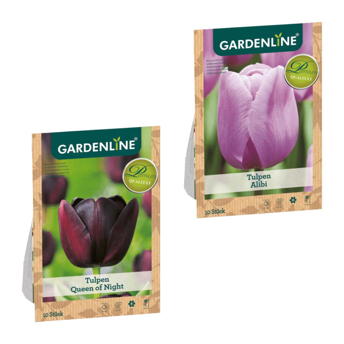 Bild 1 von GARDENLINE     Herbstblumenzwiebel-Spezialität