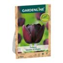Bild 3 von GARDENLINE     Herbstblumenzwiebel-Spezialität