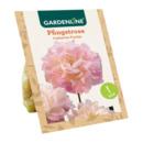 Bild 3 von GARDENLINE     Premium-Pfingstrosenknolle