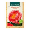 Bild 4 von GARDENLINE     Premium-Pfingstrosenknolle