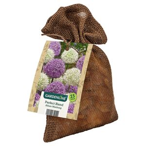 GARDENLINE®  XL-Frühlingsblumenzwiebeln im Jutebeutel
