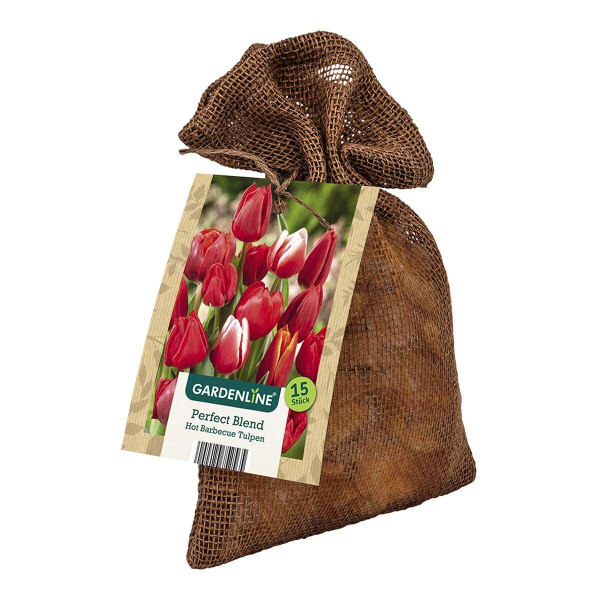 Bild 5 von GARDENLINE®  XL-Frühlingsblumenzwiebeln im Jutebeutel