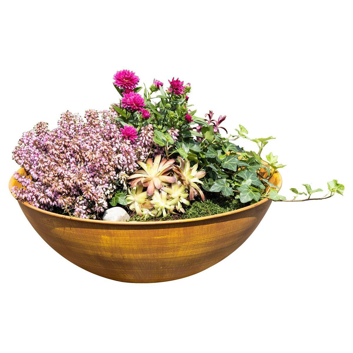 Bild 1 von CASA DECO Gartendekoration