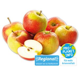 MARKTLIEBE Deutsche rote Äpfel