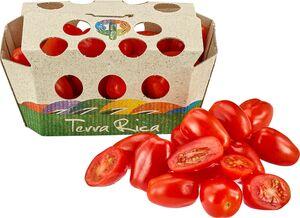 Roma-Cherry-oder Cherrytomaten