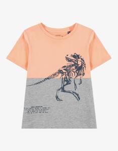 Tom Tailor - Mini Boys T-Shirt mit Dinosaurier-Druck