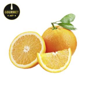 SüdafrikaGourmet HIT Orangen