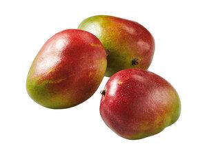 Mango, lose