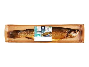 Fischerstolz ASC Forelle