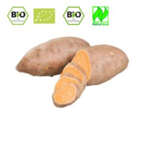 SpanienBio Süßkartoffeln