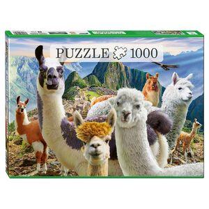 1000-Teile-Puzzle