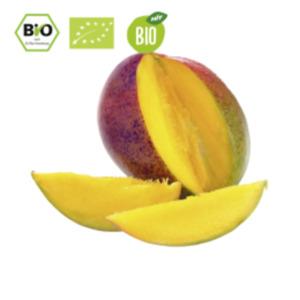 SpanienBio HIT Mango