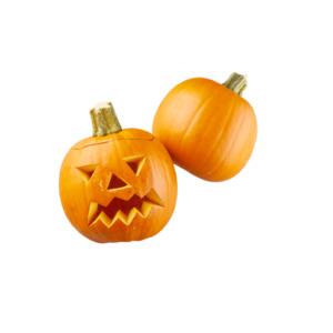 Halloween-Speisekürbis